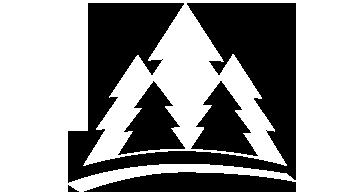 Yunnan-International-Forestry-Group-brand-image-logo