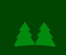 Yunnan Forestry